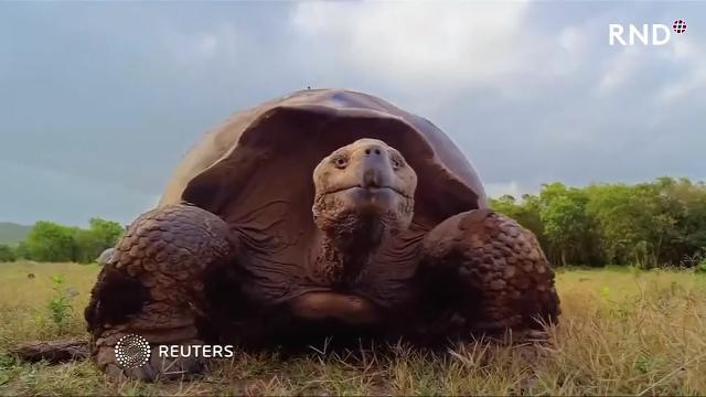 Tonnenweise Müll auf Galapagos-Inseln