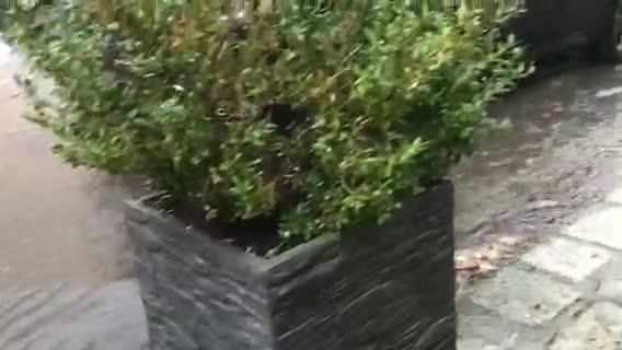 Gewitter am 27. August in Rostock 2 (Video von Andreas Ebel)