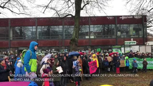 Fridays for Future-Demonstration Greifswald
